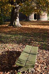 Autumn colours, Cow Tower, Norwich UK November 2019