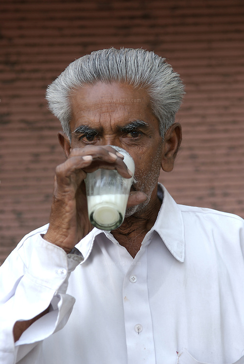 Morning in the pink city of Jaipur. An old man starts the day with fresh Lassi.
