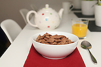 Mornflakes Cereals..Chocolatey Squares.