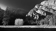 Sunlight in Yosemite Valley, California, U.S.A.