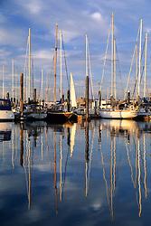 United States, Washington, Bellingham, sailboats in marina, with reflections