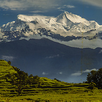 Annapurna IV and Annapurna II tower above lush pastures in the Pokhara Valley, Nepal