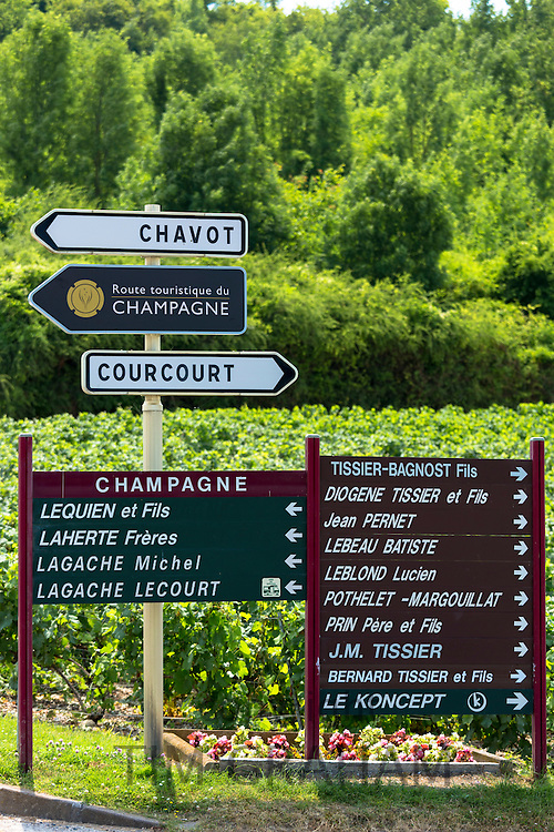 Signs at Chavot for individual champagne houses on Tourist Route of Champagne in Marne Valley, Champagne-Ardenne region, France
