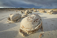 "The ""Egg Factory"" sandstone formations, Bisti Badlands, Bisti/De-Na-Zin Wilderness, New Mexico"