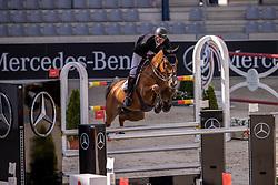 Schuttert Frank, NED, Lyonel D<br /> Aachen International Jumping <br /> Aachen 2020<br /> © Hippo Foto - Dirk Caremans<br /> 06/09/2020