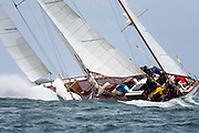 Black Watch sailing in the Opera House Cup.