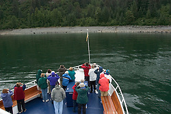 Alaska..Glacier Bay National Park, watching bears at Sandy Cove..Cruise on Spirit of Discovery..Photo copyright Lee Foster, 510/549-2202, lee@fostertravel.com, www.fostertravel.com..