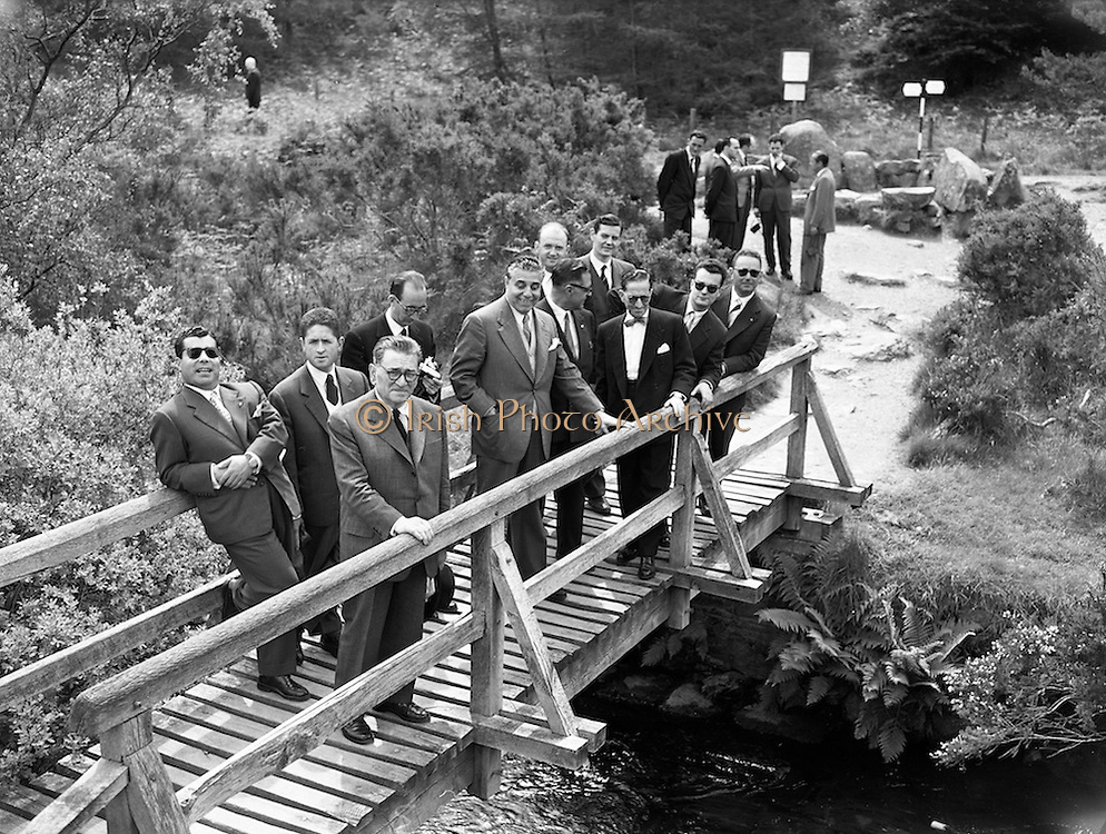 05/06/1959<br /> 06/05/1959<br /> 05 June 1959<br /> Portuguese Travel Agents and Journalists on tour of Wicklow. The group that travelled on the Inaugural Aer Lingus Lisbon-Dublin Flight on Wed. 04/06/1959 pictured at Glendalough. Included are (l-r): Fernando Herdade; Seara Cardoso; Pedro Correa Marques; Fernando de Castro; Dr Norberto Lopes; J. da Camara; Jorge Simoes; Jose Carlos de Adrade; Fernando Campos Nogueira; Tommy Cranitch, Aer Lingus and Iain Mac Carthaig, Irish Tourist Board.