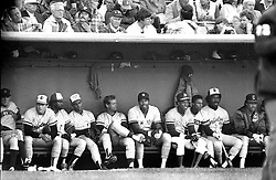 1984 Allstar game at Candlestick Park in San Francisco the American league bench.(1984 photo/Ron Riesterer)