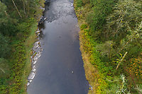 Trask River near Tillamook, Oregon.