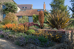 Early autumn border in Derry Watkins' garden with Nepeta, Phormium, Crocosmia × crocosmiiflora 'Solfatare'  and C. 'Star of the East' in the foreground