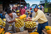 08 JANUARY 2007 - MANAGUA, NICARAGUA:  Sorting papayas in Mercado Oriental, the main market that serves Managua, Nicaragua. The market encompasses dozens of square blocks and is the largest market in Central America.  Photo by Jack Kurtz