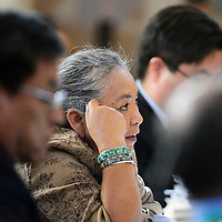 012714  Adron Gardner/Independent<br /> <br /> Navajo Nation Tribal Council delegate Katherine Benally  addresses the council on day one of the winter council session in Window Rock Monday.  Benally has been a staunch opponent for removing Speaker of the House Johnny Naize.