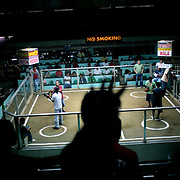 THE PHILIPPINES (Manila). 2009. Spectators gamble on the next fight as the birds are prepared for competition at the  Pasay Cockpit, Pasay City, Manila. Photo Tim Clayton <br /> <br /> Cockfighting, or Sabong as it is know in the Philippines is big business, a multi billion dollar industry, overshadowing Basketball as the number one sport in the country. It is estimated over 5 million Roosters will fight in the smalltime pits and full-blown arenas in a calendar year. TV stations are devoted to the sport where fights can be seen every night of the week while The Philippine economy benefits by more than $1 billion a year from breeding farms employment, selling feed and drugs and of course betting on the fights...As one of the worlds oldest spectator sports dating back 6000 years in Persia (now Iran) and first mentioned in fourth century Greek Texts. It is still practiced in many countries today, particularly in south and Central America and parts of Asia. Cockfighting is now illegal in the USA after Louisiana becoming the final state to outlaw cockfighting in August this year. This has led to an influx of American breeders into the Philippines with these breeders supplying most of the best fighting cocks, with prices for quality blood lines selling from PHP 8000 pesos (US $160) to as high as PHP 120,000 Pesos (US $2400)..