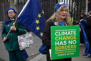 Brexit protester with a climate change placard in Westminster outside Parliament on 8th January 2020 in London, England, United Kingdom. With a majority Conservative government in power and Brexit day at the end of January looming, the role of these protesters is now to demonstrate in the hope of the softest Brexit deal possible.
