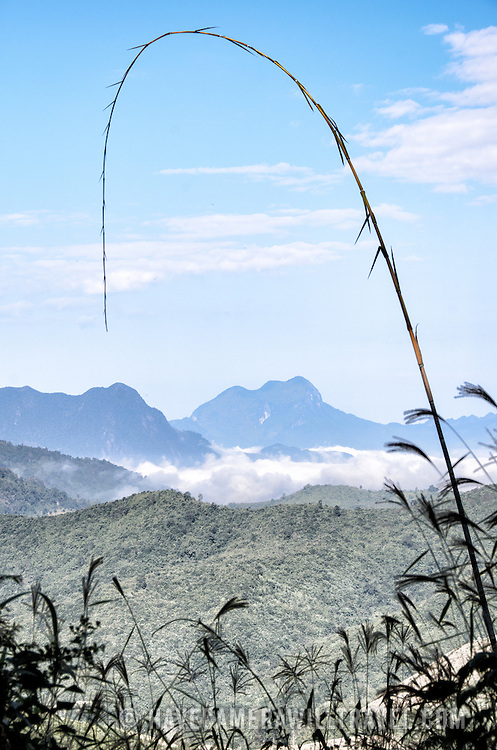 in the rugged mountainous region of northern Laos.