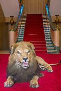 Koningin Maxima op het presidentieel paleis waar de koningin een ontmoeting heeft met president Sahle-Work Zewde tijdens haar bezoek aan Ethiopië als speciaal VN gezant voor Inclusieve Financiering.<br /> <br /> Koningin Maxima op het presidentieel paleis waar de koningin een ontmoeting heeft met president Sahle-Work Zewde tijdens haar bezoek aan Ethiopië als speciaal VN gezant voor Inclusieve Financiering.