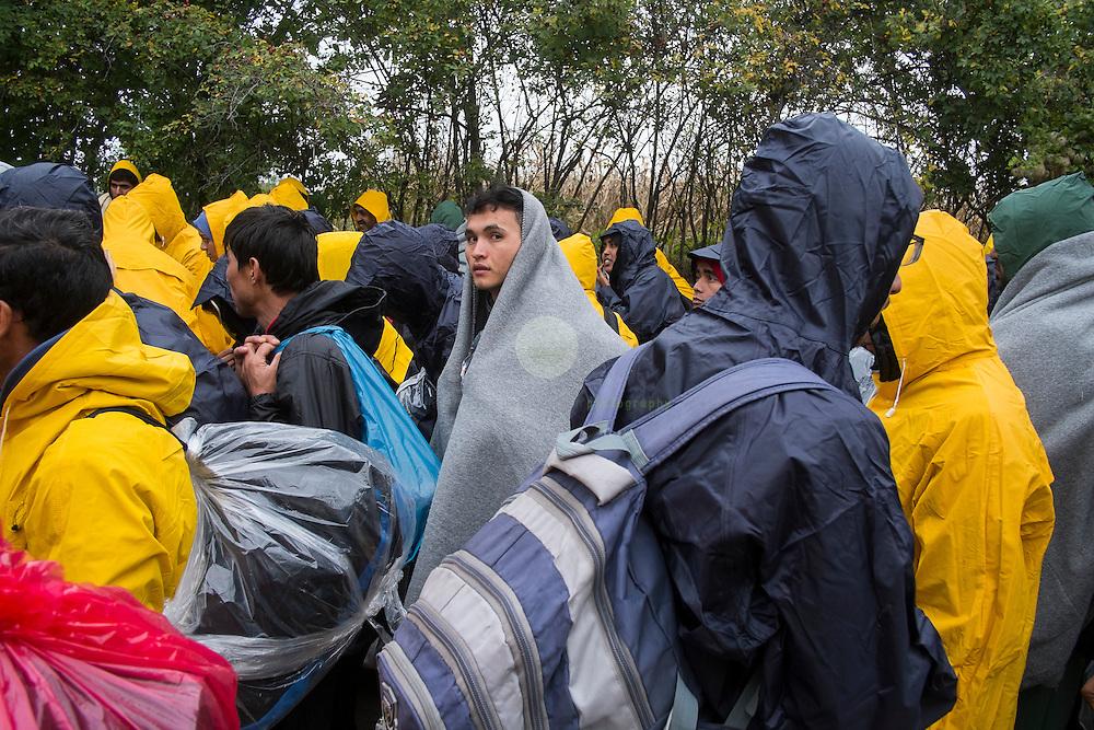 SERBIEN, Grenzstadt Berkasovo, Stadtgebiet von Šid. 08.10.2015 / Fluechtlinge an der serbisch-kroatischen Grenze: Eine Gruppe Fluchtlinge wartet bei Wind und Wetter auf ein Zeichen der - kroatischen - Polizeibeamten, die provisorische Grenze uebertreten zu duerfen. Obwohl auf serbischen Gebiet, es hier keine serbische Polizei zu sehen Die kroatische Grenze, und damit die EU-Aussengrenze, ist nur noch 100 Meter entfernt. Der Grenzuebertritt erfolgt zu Fuss und in Gruppen zu etwa 50 Personen.