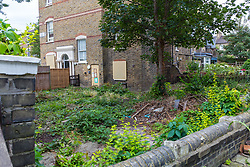 The overgrown garden of the ground floor flat where it is alleged a drug den was operating. An elephant topiary hedge at the corner of Ambler and Romilly Roads in Finsbury Park, much beloved of local residents, is under threat after it has been claimed that drug users are using the cover of the elephants. The ground floor flat at the address has been boarded up following a police raid and eviction of tenants who, according to neighbours, were using the flat as a drugs den . London, August 12 2019.