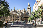 Spain, Seville, Cathedral bell tower