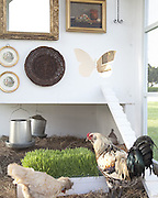 A Versailles-style hen coop at $100,000 and 'his and hers' watches for a cool million: Inside the new Neiman Marcus 'fantasy gift' catalog<br /> <br /> Luxury retailer Neiman Marcus rolled out its annual holiday catalog Tuesday, and the priciest gift this year is a pair of 'his and hers' timepieces for just over $1million from Van Cleef & Arpels.<br /> The watches depict a tale of lost love on the faces and come with a trip to romantic Paris and Geneva.<br /> Dallas-based Neiman Marcus is known for featuring expensive and often outrageous 'fantasy gifts' in its Christmas Book.<br /> <br /> Those with smaller budgets can take heart, though - almost 40per cent of the items offered in the catalog cost less than $250. The cheapest item is a $10 monogrammed mug.<br /> The 'his and her' watches each show a scene from the love story. One depicts a scene of a woman on the observation deck of the Eiffel Tower, gazing toward Notre Dame. The other watch features a man on top of Notre Dame looking toward the Eiffel Tower.<br /> 'It's a classic love story. Boy meets girl, a romance is sparked, but fate has intervened and they are separated, but both are left longing to find one another,' said Marisa Neira, watch product manager for Van Cleef & Arpels.<br /> <br /> The watches and the trip cost $1,090,000. While in Geneva, buyers receive a tour that includes the Van Cleef & Arpels watchmaking workshops.<br /> Ginger Reeder, Neiman Marcus' vice president of public relations for Neiman Marcus, said the fantasy gifts are a nod to the spirit of the holiday season and the fantasies children have about what they want for Christmas.<br /> 'All we've done is notched up what's on the list or what's available to be on your list,' Reeder said.<br /> ©Neiman Marcus/Exclusivepix