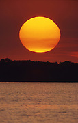 Giant sun at sunset, water and forest, Pymatuning Lake, Pymatuning State Park, Crawford Co., PA