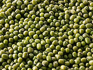 whole Mung Beans - stock photos