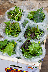 Charles Dowding's salad bags in a wooden crate