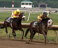 Pat Day (Yellow Silks with Orange Spot)aboard Two Trail Sioux in the Delaware Stakes at Delaware Park on July 17, 2005.  This was Pat Day's last mount, as he retired on August 3, 2005.