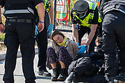 Hertfordshire Police arrest an environmental activist from HS2 Rebellion who, together with another activist, had used a lock-on arm tube to block a gate to the South Portal site for the HS2 high-speed rail link on 14 September 2020 in West Hyde, United Kingdom. Anti-HS2 activists blocked two gates to the same works site for the controversial £106bn rail line, one remaining closed for over six hours and another for over twelve hours