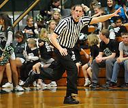 Clearview at Elyria Catholic boys high school varsity basketball on February 14, 2012.