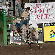 Payton Fitzpatrick attempts to ride Red Eye Rodeos Honey Badger at the 2016 Darby MT EPB  Josh Homer photo.  Photo credit must be given on all uses.