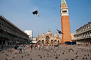 St. Mark's Basilica with pigeons and tourists, Piazza San Marco, Venice, Italy