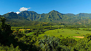 pan, Hanalei Valley Lookout, Taro fields, Kauai, Hawaii
