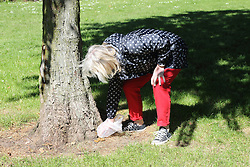 Woman picking up dog dirt in park.