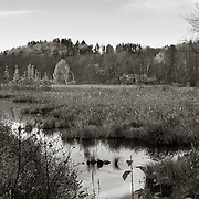 House and Marsh, Source, East Branch Housatonic River