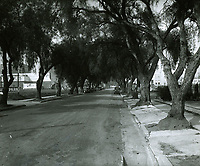 1929 Looking north up Argyle Ave. from Sunset Blvd.