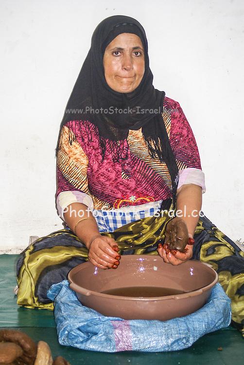 Argan oil making, Marrakesh, Morocco, North Africa