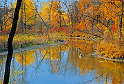 Autumn along the Seine River<br /> Winnipeg<br /> Manitoba<br /> Canada