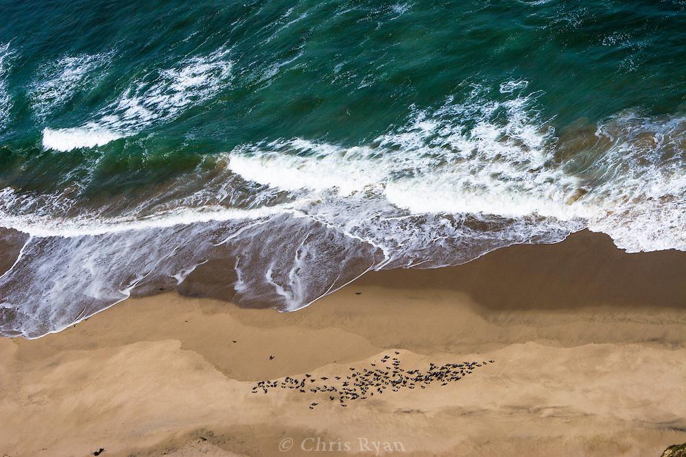 Clifftop view onto beach and aqua-green ocean, central coast, California