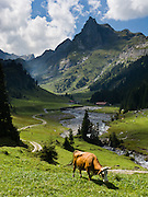 """For a quiet hike away from crowds, walk the hidden valley of Saustal, in Lauterbrunnen municipality, Berner Oberland, Switzerland, the Alps, Europe. Take the train from Interlaken Ost to Lauterbrunnen then ride the cable car to Grütschalp (1486 meters, 4379 feet). Instead of boarding the train to Murren like everyone else, exit the station to find trail head markers for Saustal, one hour and 20 minutes on foot. Continue onwards to Sauslager, Chuebodmi, Sulwald, and Isenfluh to catch the PostBus. The Bernese Highlands are the upper part of Bern Canton. UNESCO lists """"Swiss Alps Jungfrau-Aletsch"""" as a World Heritage Area (2001, 2007)."""