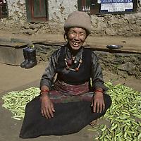 NEPAL, HIMALAYA. Sherpa woman, Khumbu, Nepal.