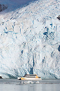 A large tour boat is dwarfed by the terminal face of the Spegazzini Glacier in Los Glaciares National Park, Argentina.