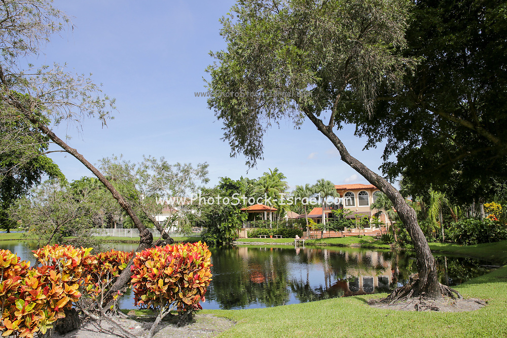 Houses, trees and sky reflecting in a pond in a park in Fort Lauderdale, Florida, USA