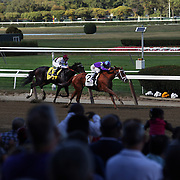 Princess of Sylmar, ridden by Javier Castellano, winning the Beldame from Royal Delta ridden by Mike E. Smith at Belmont Park during the Jockey Club Gold Cup Day, Belmont Park, New York. USA. 28th September 2013. Photo Tim Clayton