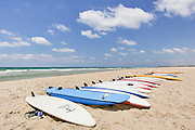 Israel, Mediterranean sea, Surfboards lined up on the beach