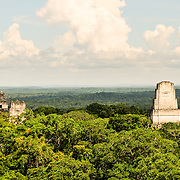 View of the Tikal Maya Ruins, the jungle canopy, and the horizon, from the top of Temple IV, the tallest of several pyramids at the site. From left to right, one can see the tops of the Temple 1 (Temple of the great Jaguar), Temple 2 (Temple of the Masks), and Temple 3 (Temple of the Jaguar Priest). From this vantage point, one can watch and hear howler monkeys, spider monkeys, and many birds moving through the treetops.