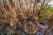 Florida Environmental