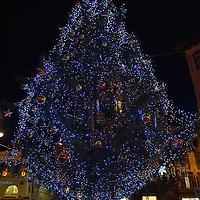TREVISO, ITALY - DECEMBER 06:  A Christmas tree is seen on December 6, 2011 in Treviso, Italy. Christmas Markets are popular in Northern Italian cities, selling festive items including lights, nativity scenes, decorations and local festive handicrafts. In most cities they will run from the end of November to January 6th. HOW TO LICENCE THIS PICTURE: please contact us via e-mail at sales@xianpix.com or call our offices in London   +44 (0)207 1939846 for prices and terms of copyright. First Use Only ,Editorial Use Only, All repros payable, No Archiving.© MARCO SECCHI