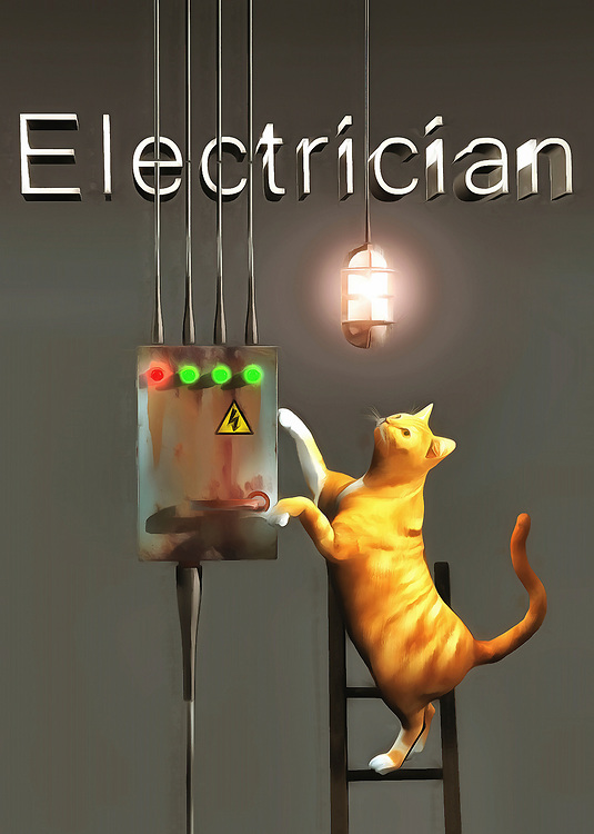 In this beautiful fine art piece, we find that a cat has taken up the job of an electrician. Their curiosity would certainly be sated in this career field, but it's difficult to imagine the cat will be able to flip some switches, if you happen to blow out a fuse! Nonetheless, you can see that this kitty is doing their very best to get to the root of the problem. They appear to be close to the answer, but it remains to be seen if your power is going to come back on. Still, we see the light has come on, so maybe we should give this cat some credit! .<br /> <br /> BUY THIS PRINT AT<br /> <br /> FINE ART AMERICA<br /> ENGLISH<br /> https://janke.pixels.com/featured/electrician-jan-keteleer.html<br /> <br /> WADM / OH MY PRINTS<br /> DUTCH / FRENCH / GERMAN<br /> https://www.werkaandemuur.nl/nl/shopwerk/Katten-elektricien/436569/134